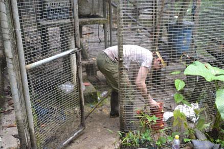 Alex limpiando la jaula de los capuchins