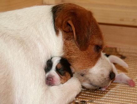 """Bild: Emmi mit ihrer neu geborenen Tochter """"Believe in Magic Anything Goes"""", Bea"""