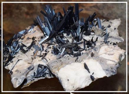 museo del minerale Campiglia