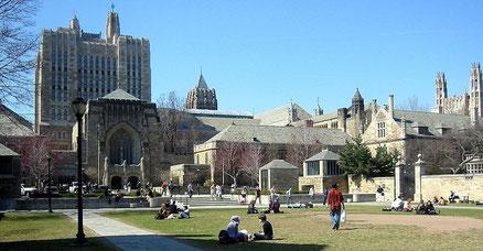 Yale大学キャンパスの写真