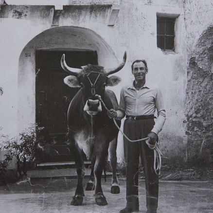 Angelo mit Ochsen auf der Piazza Privata