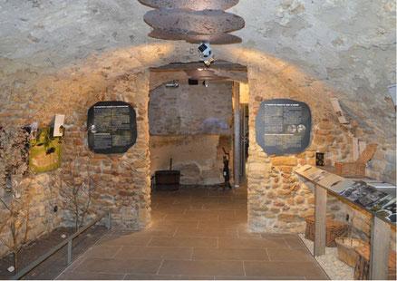Trüffelmuseum - Musée de la truffe et du vin - Frankreich Das Museum befindet sich in der hervorragenden Commanderie des Templiers und zeigt das Wesentliche des Lebens von Richerenches, einem provenzalischen Dorf im Haut Vaucluse in der Enclave des Papes,