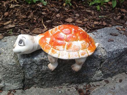 süße, müde Schildkröte, die es sich gerne auf der Fensterbank gemütlich macht! 19,-