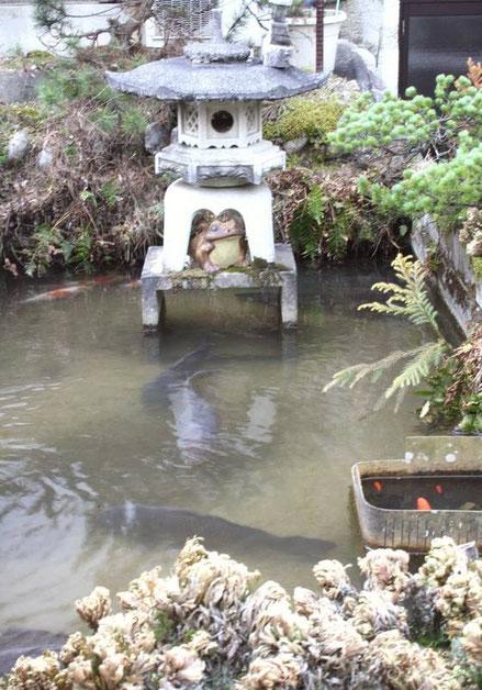 Magome : grenouille, lanterne de pierre et carpes