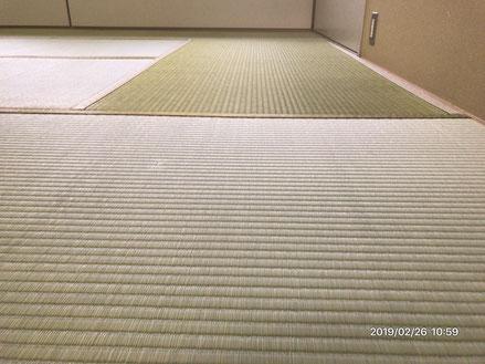 横浜市港南区の畳屋さん 内藤畳店 い草の畳替え後