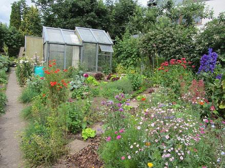 Hausgarten mit vielen bunten Blüten, Nutzpflanzen, Sträuchern und Gewächshaus.