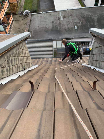 rinnenreinigung dachdecker köln roofer sanierung psa google steildach flachdach begrünung