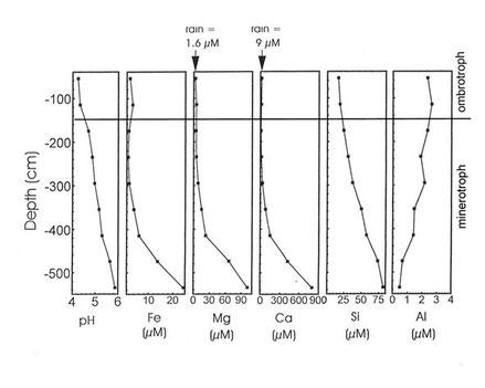 Fig. 3: Abgrenzung des ombrotrophen Bereichs - Porenwasser