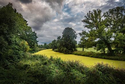 Stimmungsvoller Himmel über Auenlandschaft, Fotoreise in Deutschland