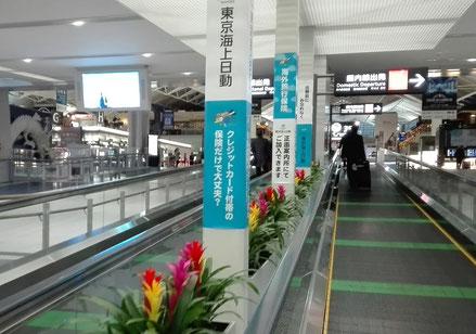 東京海上火災保険-海外旅行保険