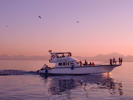 MAG Lifestyle Magazin Urlaub Reisen Yacht Yachturlaub Yachting Hobby Sport Alternative Wohnmobil Corona Luxus Freiheit Yachtcharter in Kroatien Haustiere Hund Bord