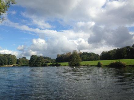 Coaching beim Wandern am Öjendorfer See