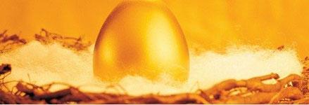 金の卵を産むガチョウを育てましょう!!!