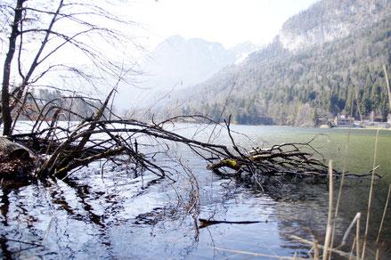 Regionalsport Reintaler See Tirol Kufstein Kramsach