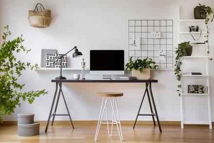 Arbeitsplatz mit Compunter, Lampe, Pflanzen und Regal