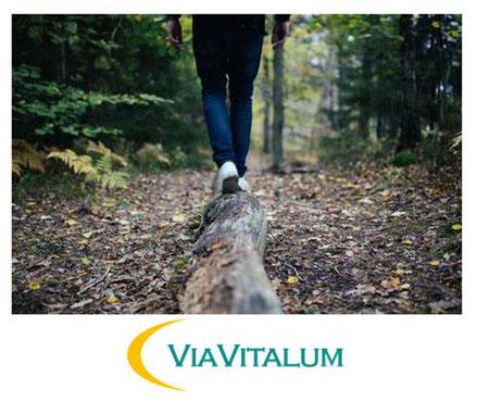Der Weg der Gesundheit - Das ViaVitalum stellt sich vor - Resilienz & Salutogenese Duisburg Moers Krefeld Oberhausen Düsseldorf und Umgebung
