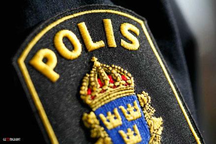 Грузинские «Воры в законе» пустили корни в Швеции