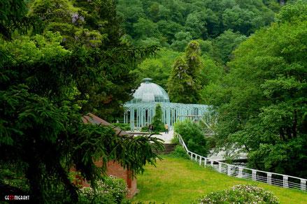 Легендарные курорты «Боржоми» и «Бакуриани» готовятся к приему отдыхающих со всего мира