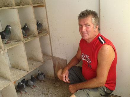 la colombophilie en Baie de Somme