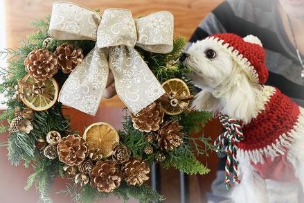クリスマスリース ワークショップ