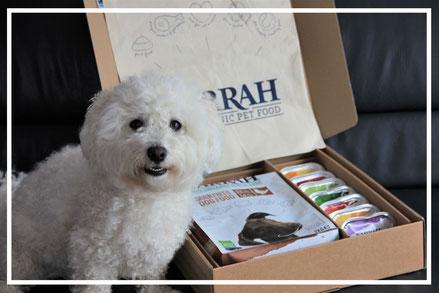 Hundefuttertest Yarrah Paket
