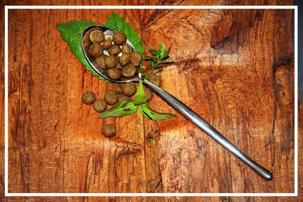 Trockenfutter Yarrah Biofutter Getreidefrei