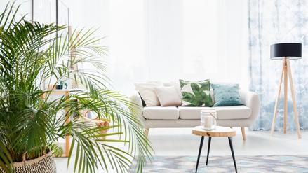 Wohnzimmer mit weissem Sofa und bunten Kissen. Gemütliche Sitzecke und schöne Pflanze.