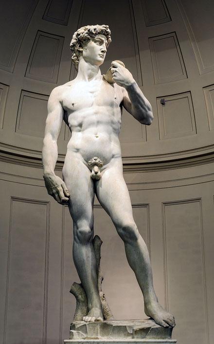 ヘブライ人の預言者で神童の王であるダビデを、筋肉質なギリシャ人の特徴描いたこの像はルネサンスの新プラトン主義の理想を見事に視覚化した傑作とされている。