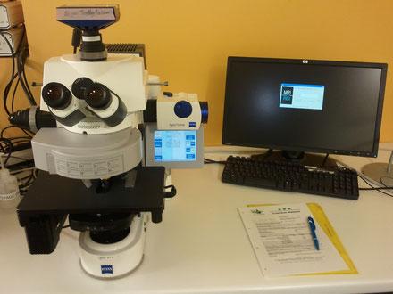 Microscopes de recherche révisés par Claude Gonon Microscopie