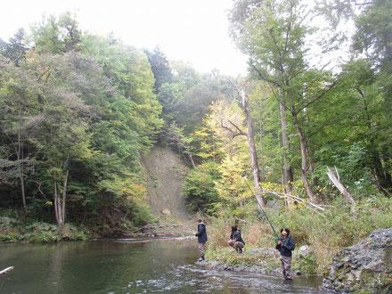 釣りと森林浴