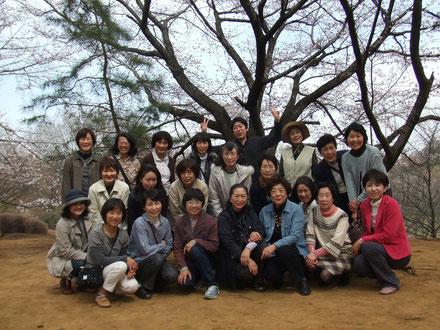 お花見 (ひなた村にて)   (2011年4月)