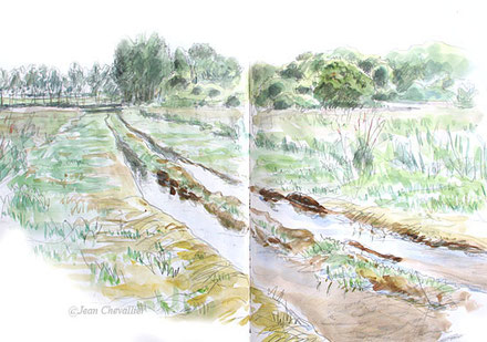 Chemin inondé, aquarelle Jean Chevallier