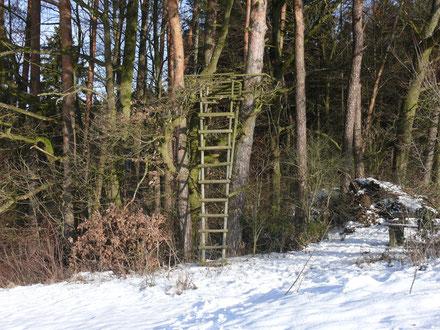 Jägerstand bei Tauchersreuth