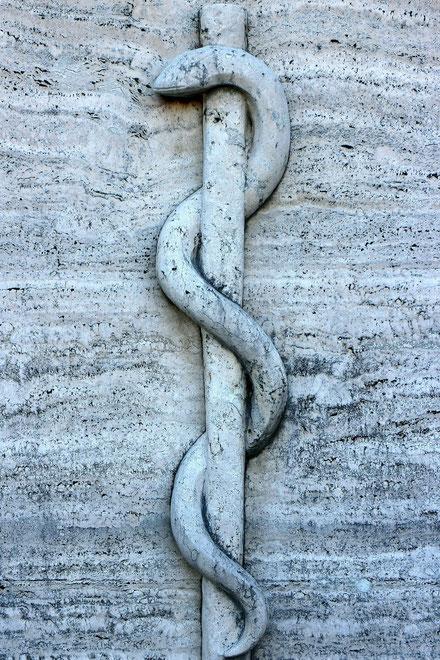 Die mit dem Pfahl Gottes eins gewordene Christus-Schlange triumphiert über alle Schlangen Ägypten-Jerusalems.