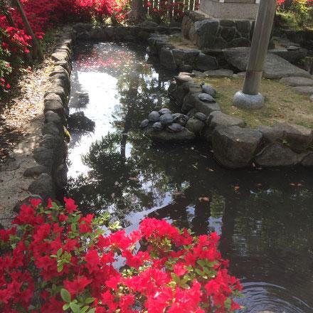 石切神社「水神社」(筆者撮影)