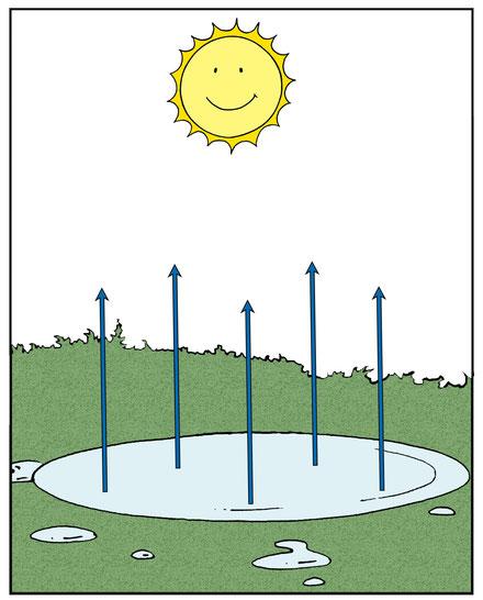 Hohe Verdunstung bei Sonnenschein und Wärme