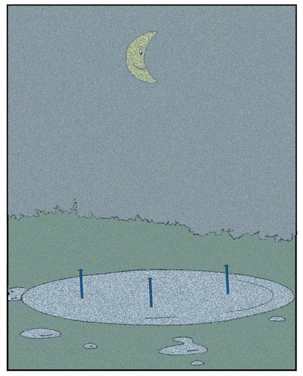 In der kühlen Nacht kondensiert das Wasser in der Luft -> Nebel
