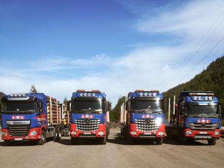 Holztransporter Fuhrpark Lichtenwöhrer Logistik