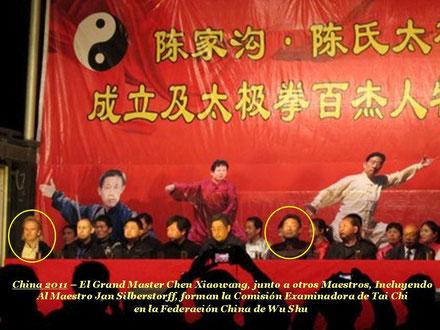 Jan Silberstorff, Grand Master Chen Xiaowang, Tai Chi, Wu Shu, China 2011
