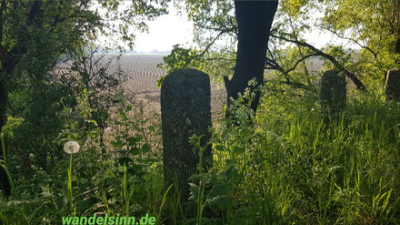 Ausblick an der Bahnekuhle, Vernum