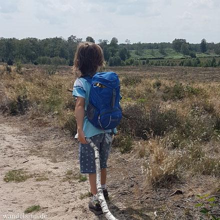Wandelwege in den Maasduinen