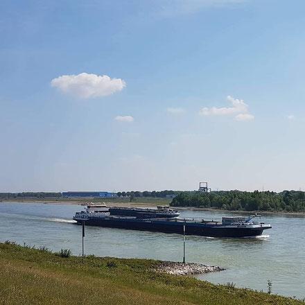 Der Rhein bei Wesel