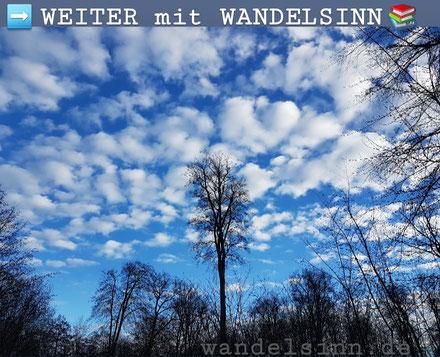 Unterwegs im Grafenberger Wald