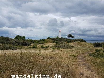 Leuchtturm mit Baum auf Hiddensee