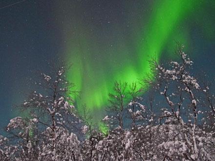 Wunderschöne Nordlichter