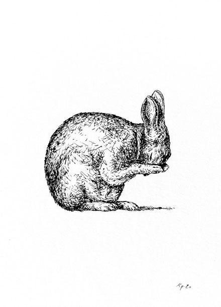 kitsc-paradise kp exposition encre de chine gravure toilette d'un lapin