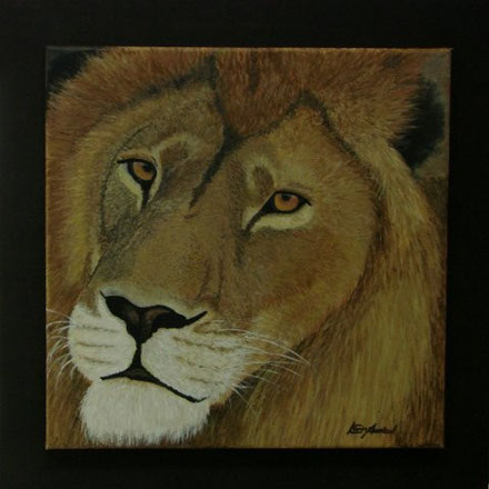 Lion JOEL 50 x 50 cm, Acryl (verkauft)