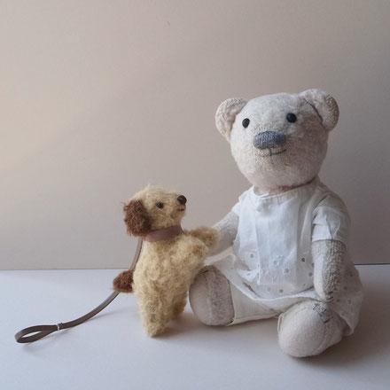 fairysaddle teddybear little dog