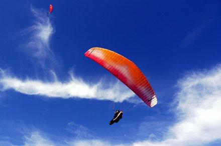 Paragliding Algarve Copyright Zebarnabe