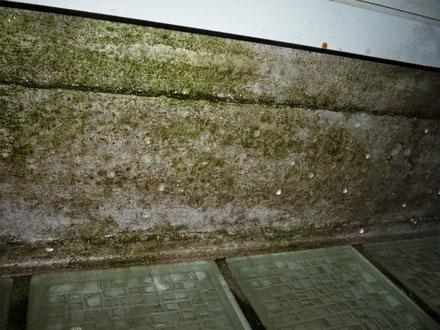 Wassertropfen an der Decke über den Glasbausteinen